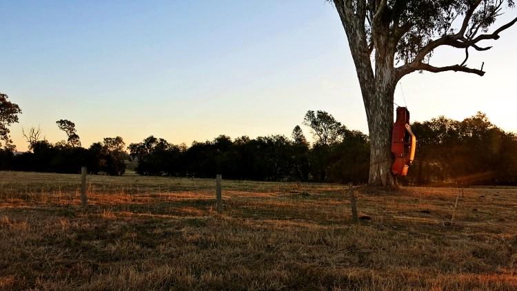 Rathdowne, NSW