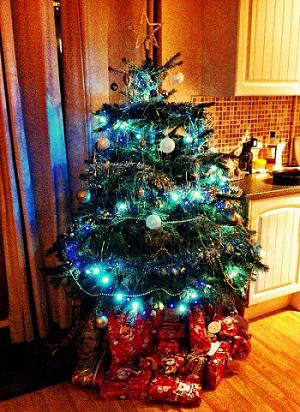 Never Ending Honeymoon | Christmas Tree at orphans Christmas in London