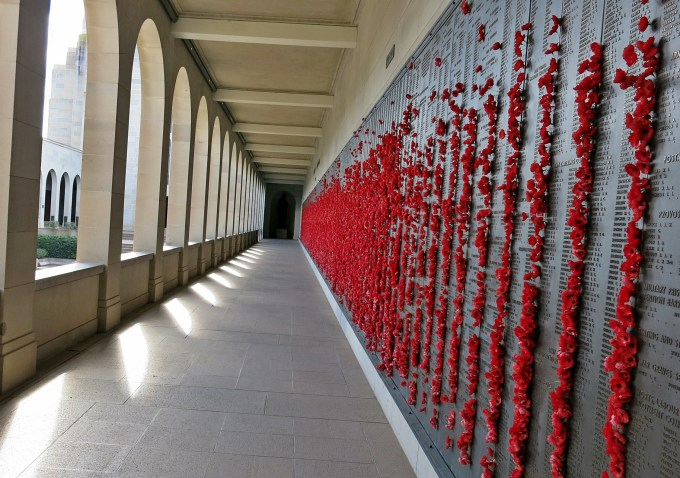 8 War Memorial Poppies