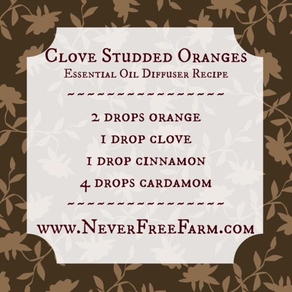 clovestuddedoranges
