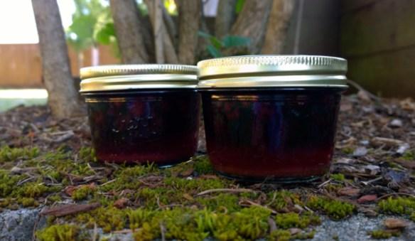 spicedblackberries
