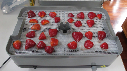 strawberrydrying1