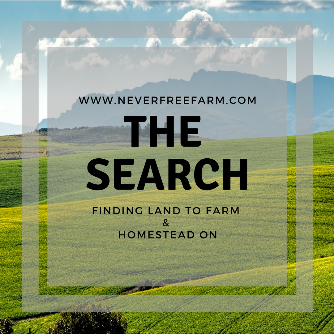The Search: Finding Land To Farm and Homestead On
