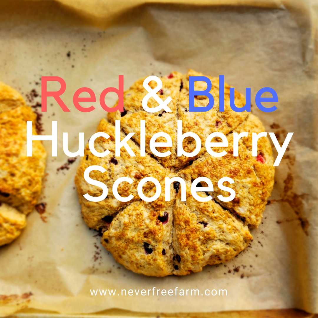 Red and Blue Huckleberry Scones