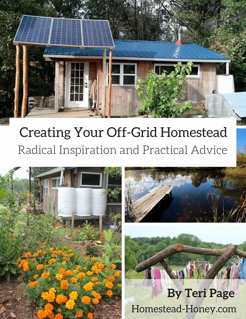 Book Review: Creating Your Off-Grid Homestead: Radical Inspiration and Practical Advice