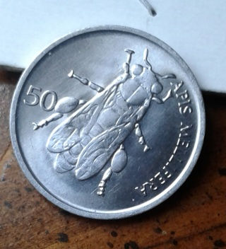 50 Stolinov fly coin