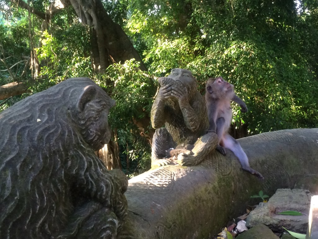 Spot the real monkey :P