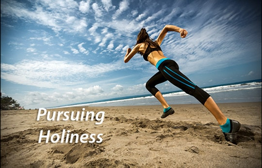 Pursuing Holiness