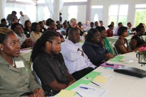 A section of participants at the Nevis Financial Services Regulation and Supervision Department 2013 AMI/CFT Awareness Seminar and Training Workshop on April 11, 2013, at the Occasions Conference Centre at Pinneys