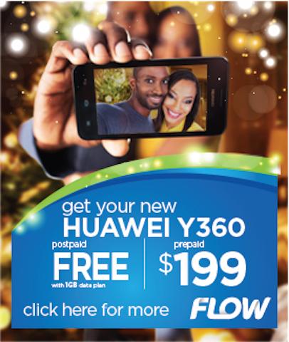 SKN_Christmas_Huawei_NevisPgs_274x324 copy 2