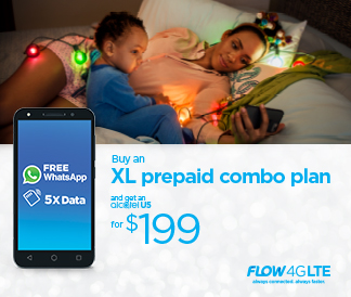 SKN—Flow-Christmas-Bedtime.ai-Nevis-Page-Banner-324×274