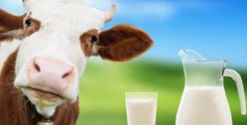 Ticari Süt İşletmelerince Mart Ayında 838.444 Ton İnek Sütü Toplandı