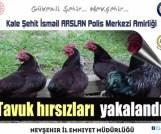 Tavuk Çalan Hırsızlar Kısa Sürede Yakalandı