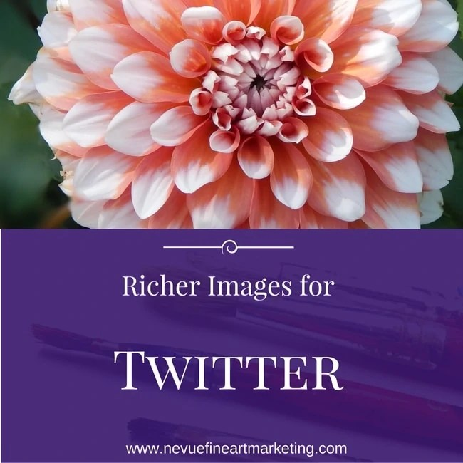 Richer Images for Twitter Help Artists Grow Their Audience