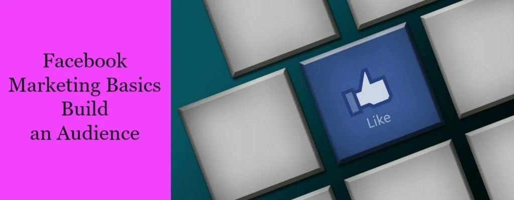 facebook-marketing-basics-build-an-audience