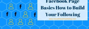 Facebook Page Basics How to Build Your Following