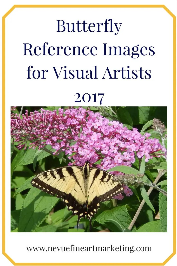 Butterfly Reference Images for Visual Artists 2017. Purchase these image for references for your new art projects.
