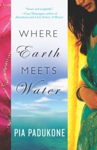 Where Earth Meets Water- book cover
