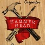 Hammerhead book cover