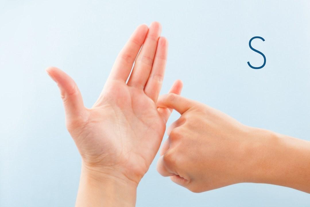 British Sign Language S