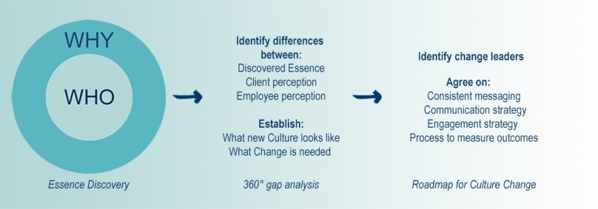 company-culture-diagram