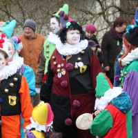01-02-2014_biberach_tannheim-narrenumzug_fascing_masken_narrenzunft-tannheim_poeppel_new-facts-eu20140201_0046