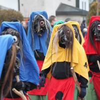 01-02-2014_biberach_tannheim-narrenumzug_fascing_masken_narrenzunft-tannheim_poeppel_new-facts-eu20140201_0089