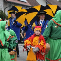 01-02-2014_biberach_tannheim-narrenumzug_fascing_masken_narrenzunft-tannheim_poeppel_new-facts-eu20140201_0095