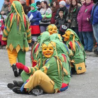 01-02-2014_biberach_tannheim-narrenumzug_fascing_masken_narrenzunft-tannheim_poeppel_new-facts-eu20140201_0112