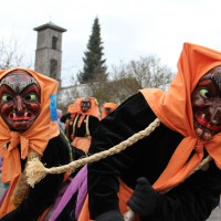 01-02-2014_biberach_tannheim-narrenumzug_fascing_masken_narrenzunft-tannheim_poeppel_new-facts-eu20140201_0292