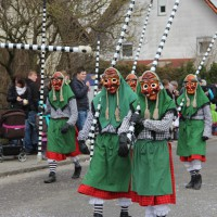 01-02-2014_biberach_tannheim-narrenumzug_fascing_masken_narrenzunft-tannheim_poeppel_new-facts-eu20140201_0310