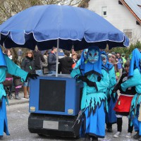 01-02-2014_biberach_tannheim-narrenumzug_fascing_masken_narrenzunft-tannheim_poeppel_new-facts-eu20140201_0332