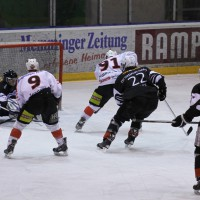 02-02-2014_eishockey_bayernliga-indians_ecdc-memmingen_esc-hassfurt_fuchs_new-facts-eu20140202_0025