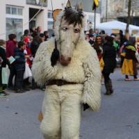 03-02-2014_ravensburg_bad-wurzach_narrensprung_umzug_poeppel_new-facts-eu20140303_0311