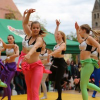 10-05-2014_memmingen_blumenkoenigin_memmingen-blueht_tanz-fest_poeppel_new-facts-eu0074
