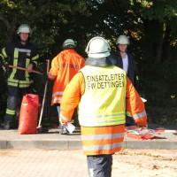 18-10-2013_bab-a7_rastanlage-illertal-west_umweltdelikt_feuerwehr-dettingen_poeppel_new-facts-eu20131018_0002