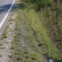 16-06-2014-schlingen-pforzen-unfall-motorrad-pkw-ueberholvorgang-polizei-bringezu-new-facts-eu_0010