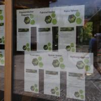 17-06-2014-unterallgaeu-legau-umweltstation-brk-wasserwacht-abenteuer-siedler-poeppel-groll-new-facts-eu_0072