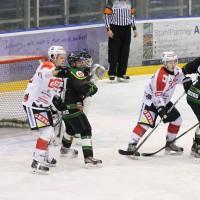 26-12-2014-memmingen-eishockey-idians-ecdc-moosburg-fuchs-new-facts-eu0045