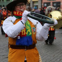 18-01-15_Memmingen_Narrensprung_Fasnet_Fasching_Nachtumzug_Stadtbachhexen_Poeppel_new-facts-eu0185