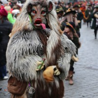 18-01-15_Memmingen_Narrensprung_Fasnet_Fasching_Nachtumzug_Stadtbachhexen_Poeppel_new-facts-eu0331