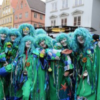 18-01-15_Memmingen_Narrensprung_Fasnet_Fasching_Nachtumzug_Stadtbachhexen_Poeppel_new-facts-eu0464