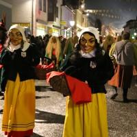 13-02-15_BW_Biberach_Ochsenhausen_Narrensprung_Nachtumzug_Poeppel_new-facts-eu0296