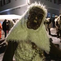 13-02-15_BW_Biberach_Ochsenhausen_Narrensprung_Nachtumzug_Poeppel_new-facts-eu0338