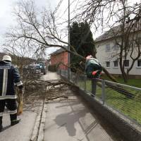 Sturmschäden Unterroth u Illertissen