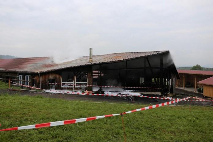 27.05.2015-Marktoberdorf-Burk-Feuer-Pferdestall-Reiterhof-Feuerwehr-alle Tiere gerettet-Bringezu-Ostallgäu (35)