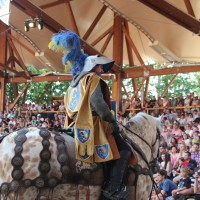 12-07-2015_BY-Kaltenberg-Festspiele_2015_Tunier_Kuehnl_new-facts-eu0130
