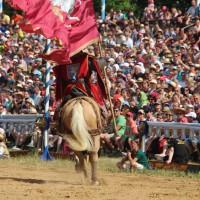 12-07-2015_BY-Kaltenberg-Festspiele_2015_Tunier_Kuehnl_new-facts-eu0131