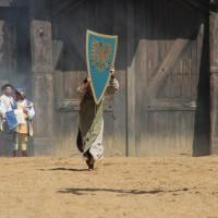 12-07-2015_BY-Kaltenberg-Festspiele_2015_Tunier_Kuehnl_new-facts-eu0133