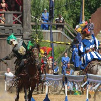 12-07-2015_BY-Kaltenberg-Festspiele_2015_Tunier_Kuehnl_new-facts-eu0155